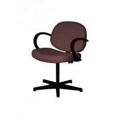 RV19 Riva 2000 Shampoo Chair by Belvedere With Your Choice Color